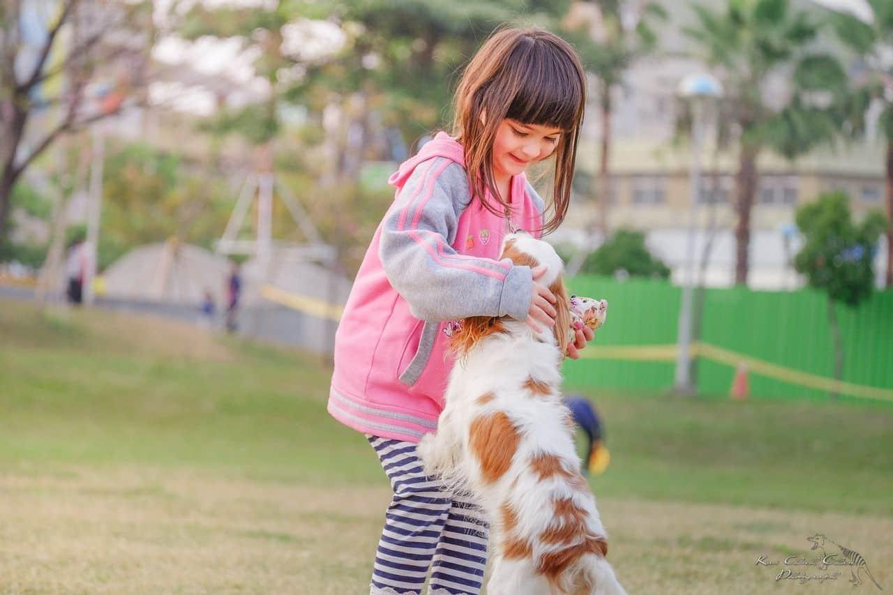 consejos para ayudar a tu hijo a superar el miedo a los perros